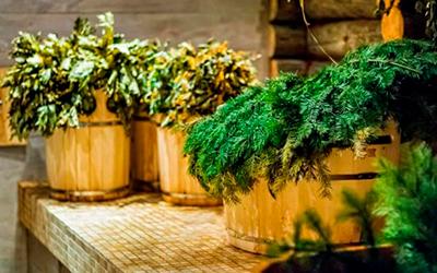 травы для бани и сауны фото