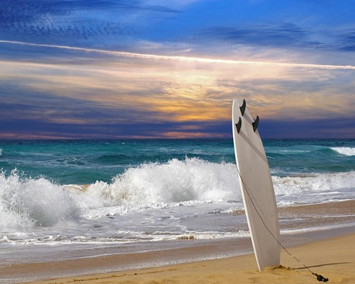 виды серфинга фото