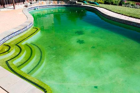 галоген придающий воде в бассейне голубой цвет фото