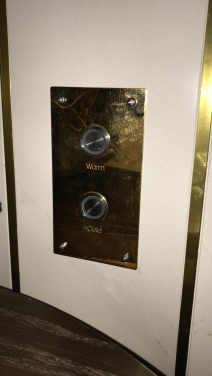 2х кнопочная панель включения WDT 19014-4 Gold